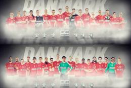Panasonic bliver ny partner til Dansk Håndbold forbund